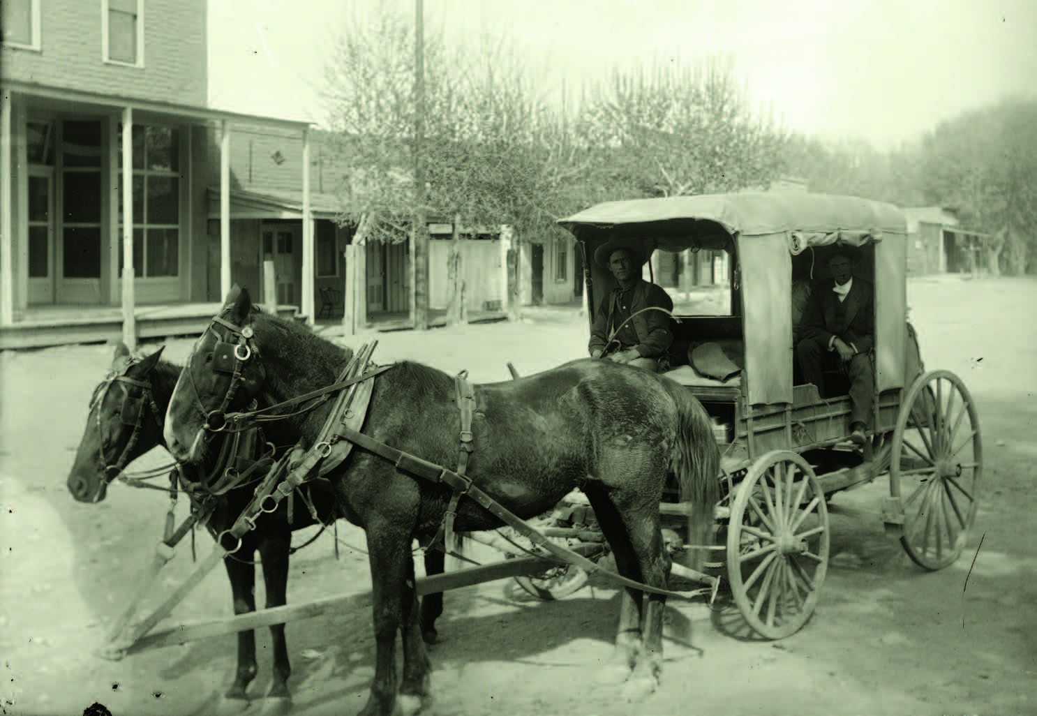 Mail carriers in a horse buggy in the mining area of Kingston and Hillsboro, New Mexico, ca. 1895–1902. Photograph by George T. Miller. Palace of the Governors Photo Archives (NMHM/DCA), Neg. No. 076559..
