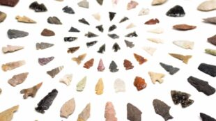 A selection of projectile points in ARC's education collection, MIAC EDU62649. Photograph by Chris Dorantes.