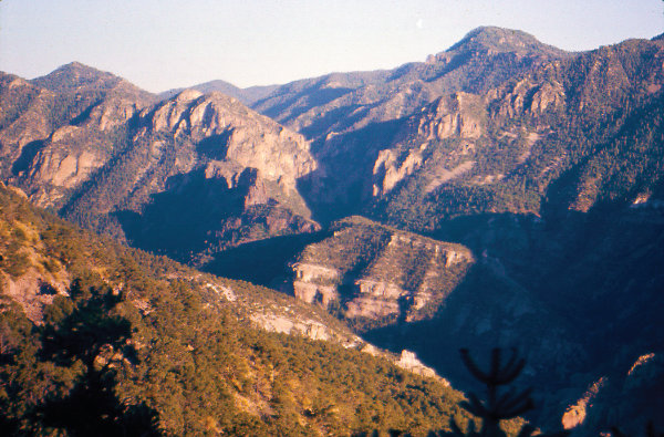 Figure 4: Datil-Mogollon Highlands, Gila Wilderness: The cliffs are eroded volcanic rock from multiple, gigantic, caldera super-eruptions that built today's Mogollon Mountains and other mountain ranges such as the Datil, Black, Socorro, and Magdalena Mountains. Photograph by J.F. Callender.