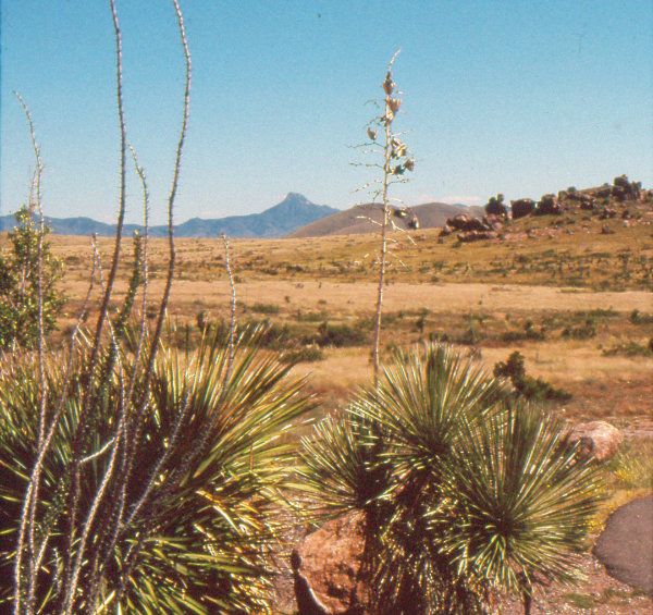 Figure 5: Basin and Range: Cookes Peak, Cookes Range, and the Mimbres Valley are part of a region of north-south trending mountain ranges and valleys. Visible at right are a few of the eroded boulders of City of Rocks State Park that once erupted from calderas in the Mogollon Mountains and were broken and eroded as the Basin and Range Province formed. Photograph by Dr. Larry Crumpler, New Mexico Museum of Natural History and Science.